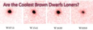 Are the Coolest Brown Dwarfs Loners?