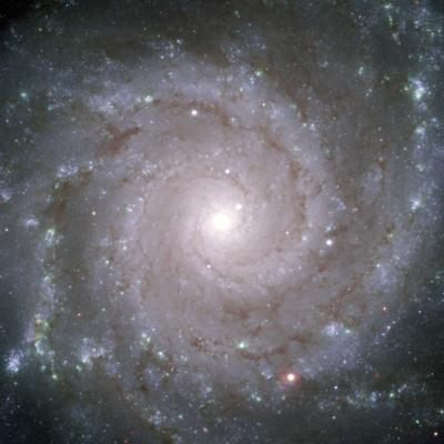 "The ""Perfect Spiral"" M 74"