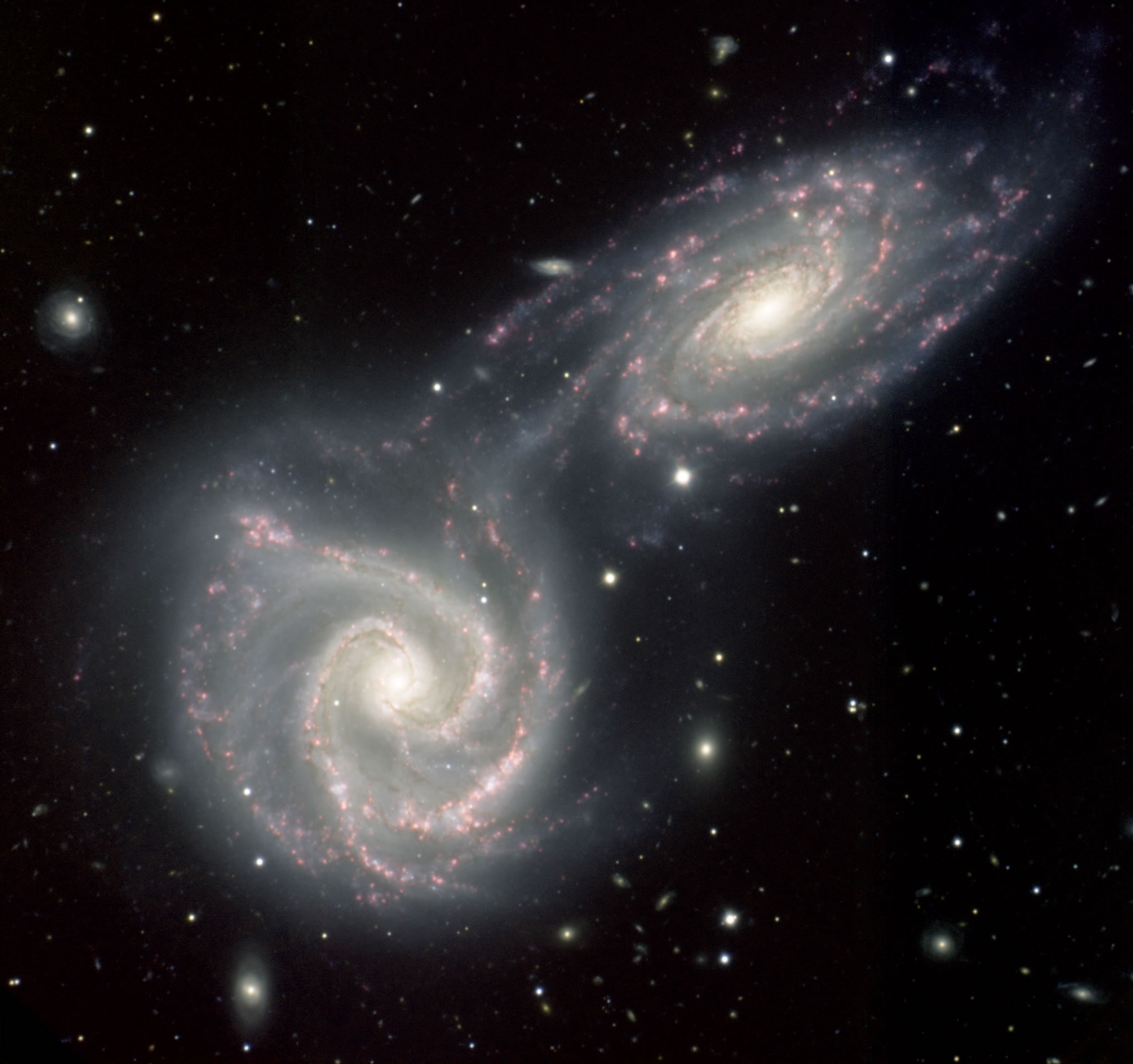 What Gives Galaxies Their Distinctive Shape Figmed